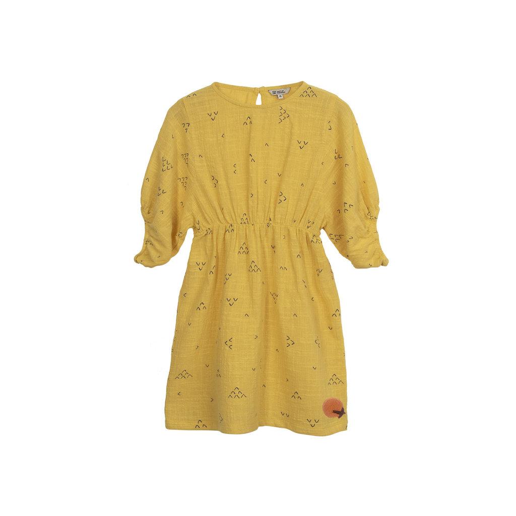 Barn of Monkeys Swallow Printed Dress