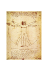 "Da Vinci - The Vitruvian Man Poster 24""x36"""