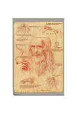 "Leonardo Da Vinci - Pot Poster 24""x36"""