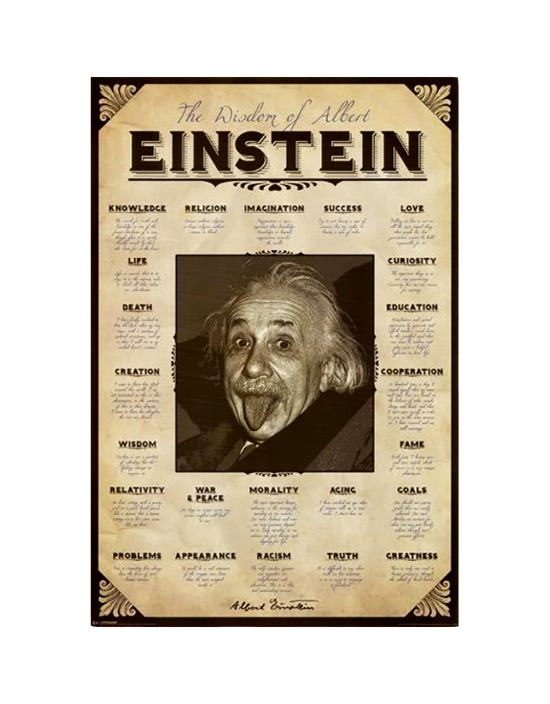 "Einstein - Quotes Poster 24""x36"""