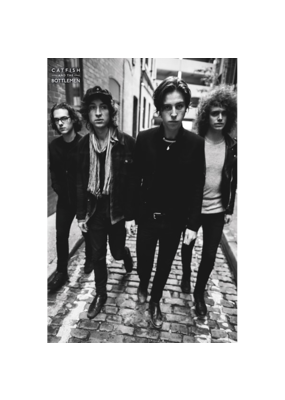"Catfish and The Bottlemen Poster 24""x36"""
