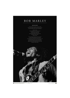 "Bob Marley - Iron Lion Poster 24""x36"""