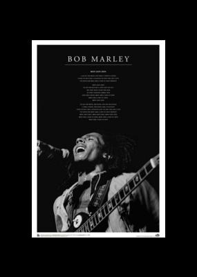 "Bob Marley - Iron Lion Zion Live Poster 24""x36"""