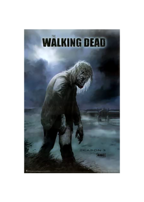 "The Walking Dead - Zombie Poster 24""x36"""