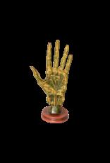 "Alchemy Palmistry Hand Statue 11""H"