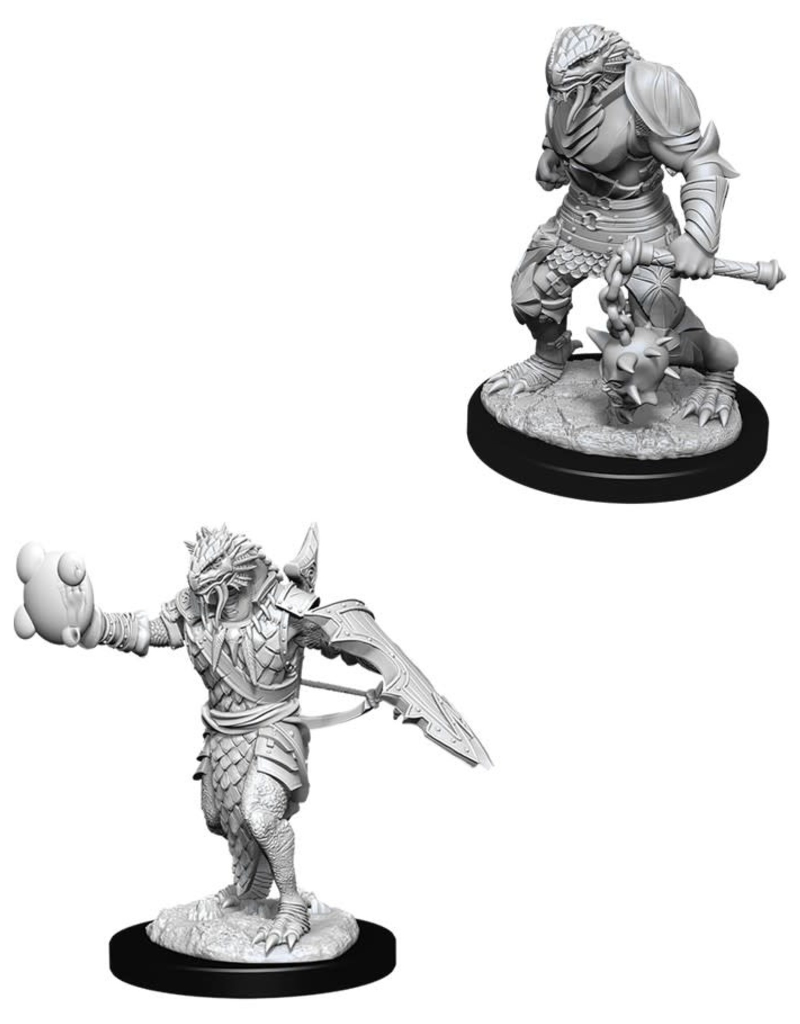 Wizkids D&D Nolzur's Unpainted Miniatures: Dragonborn Paladin Male