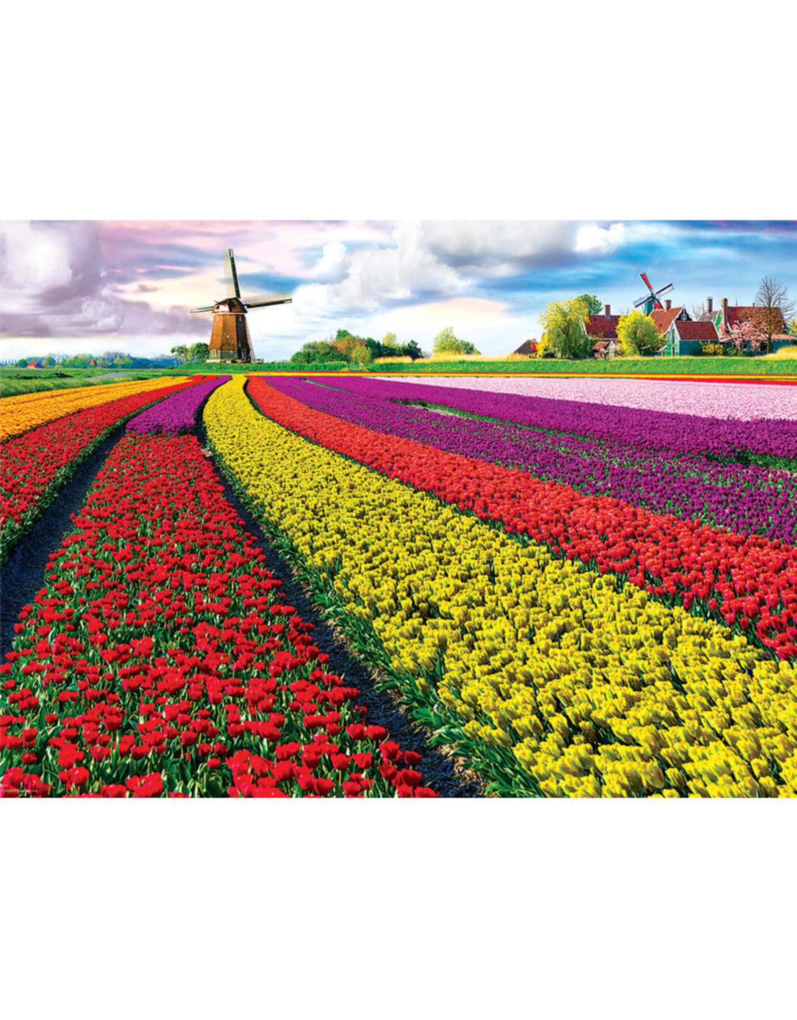 Eurographics Tulip Field - Netherlands Puzzle 1000 PCS