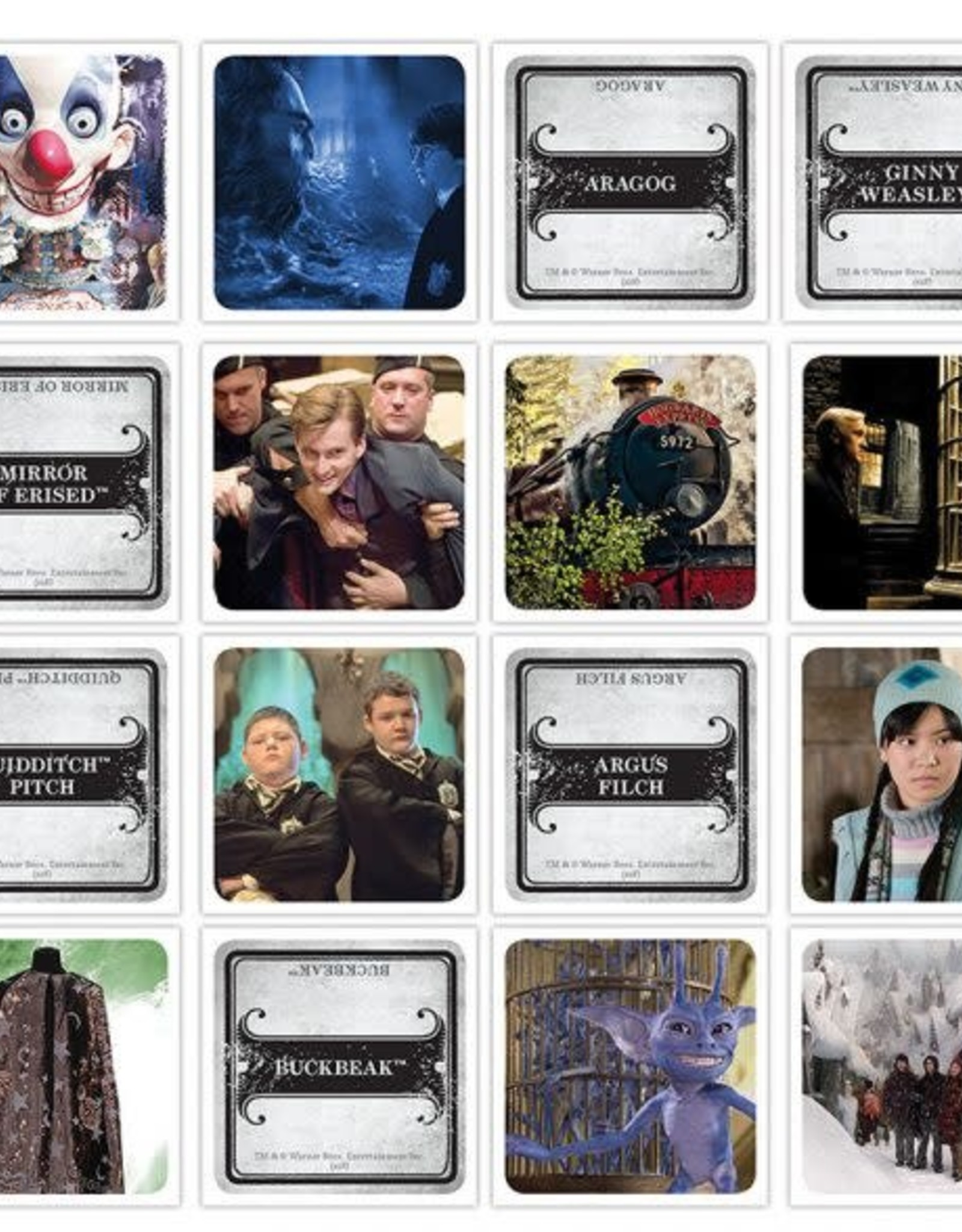 USAopoly Codenames Harry Potter