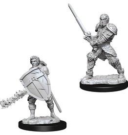 Wizkids D&D Nolzur's Unpainted Miniatures: Human Fighter Male