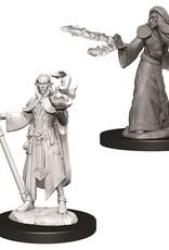 Wizkids D&D Nolzur's Unpainted Miniatures: Elf Wizard Male