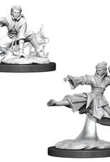 Wizkids D&D Unpainted Minis: Human Monk Female