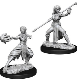 Wizkids D&D Nolzur's Unpainted Miniatures: Half-Elf Monk Female