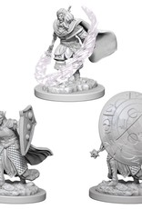 Wizkids D&D Nolzur's Unpainted Miniatures: Elf Cleric Male
