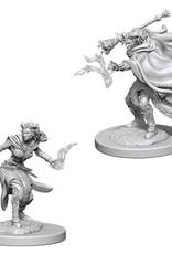 Wizkids D&D Unpainted Minis: Tiefling Warlock Female
