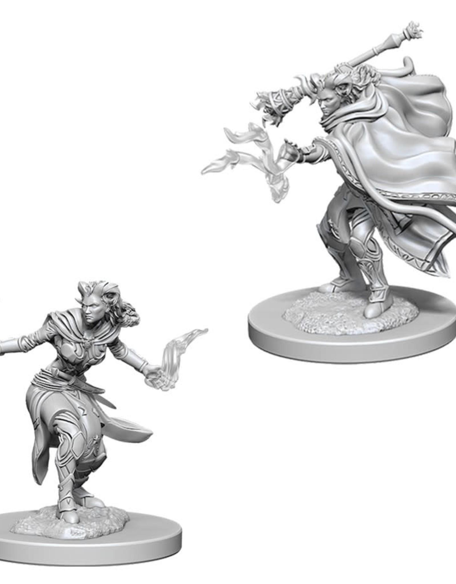 Wizkids D&D Nolzur's Unpainted Miniatures: Tiefling Warlock Female