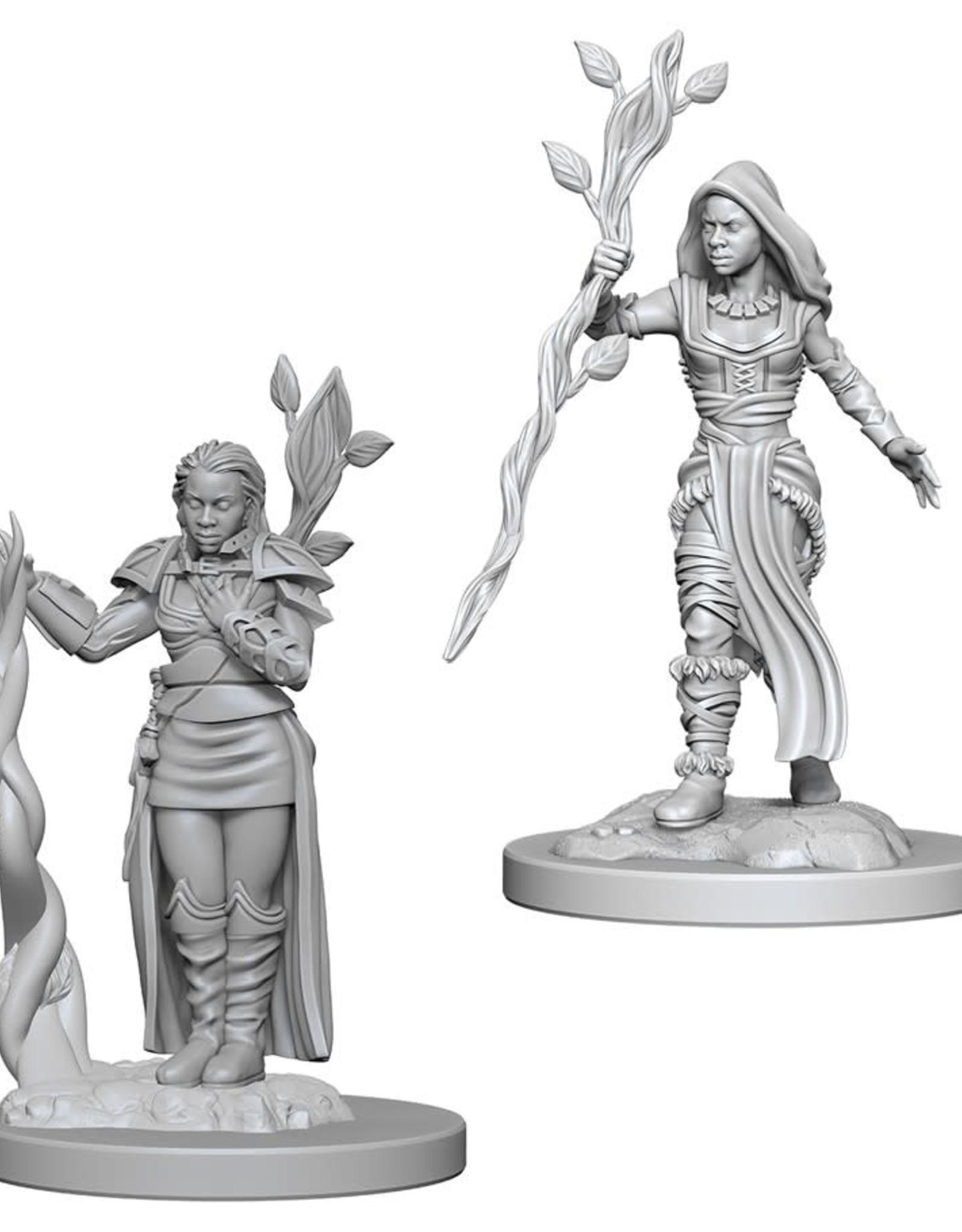 Wizkids D&D Nolzur's Unpainted Miniatures: Human Druid Female