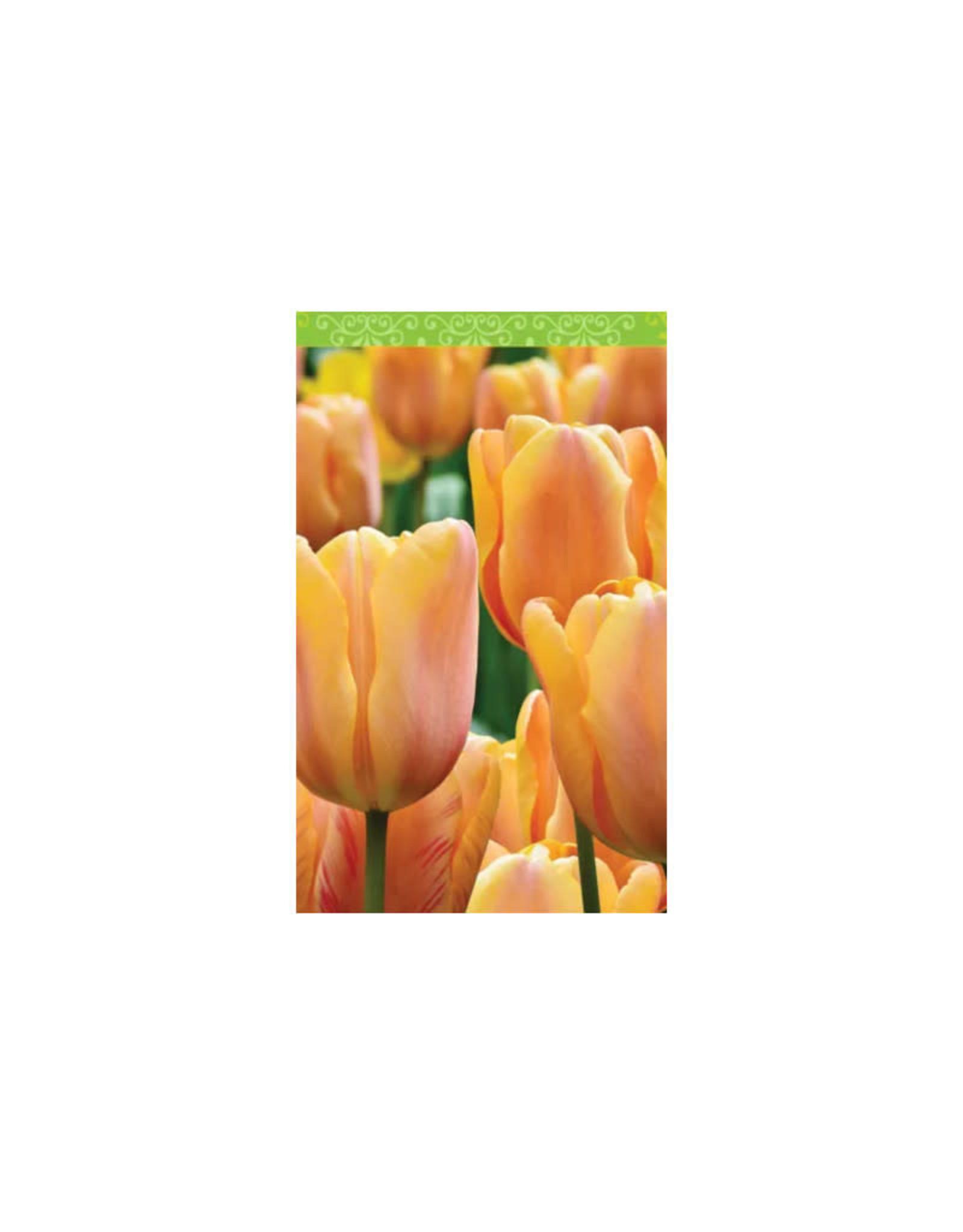 Springbok Bridge Score Pads: Tulips