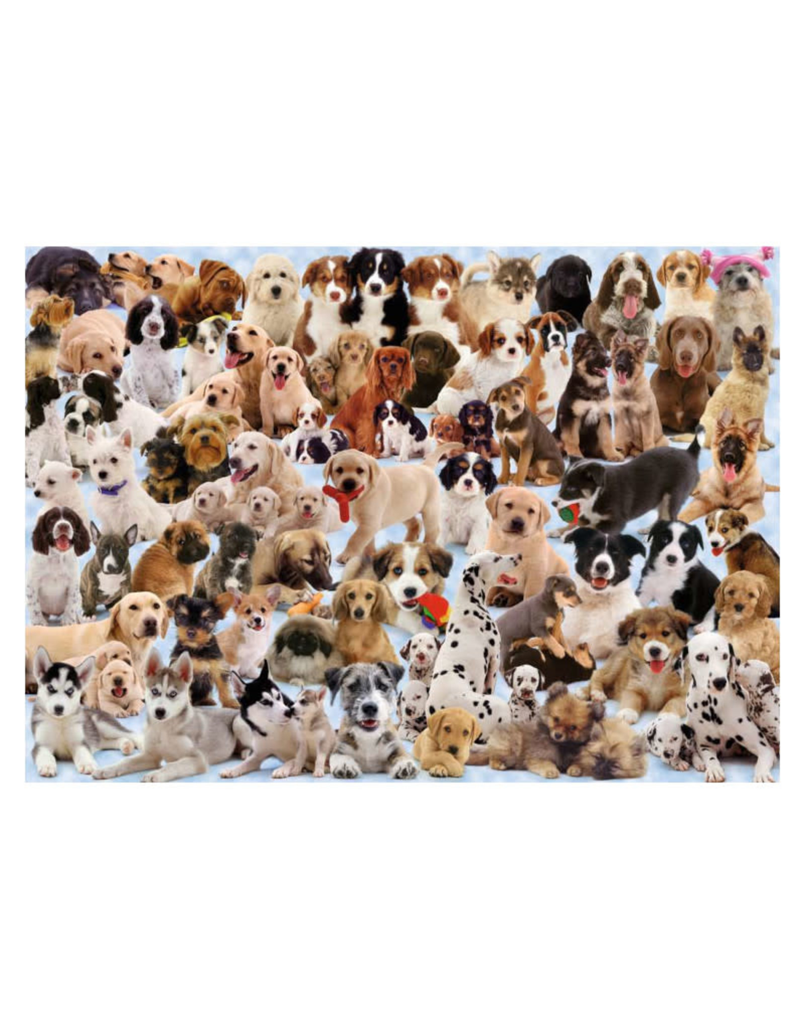 Ravensburger Dogs Galore Puzzle 1000 PCS