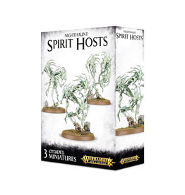 Games Workshop Warhammer Age of Sigmar Nighthaunt Spirit Hosts