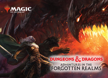 D&D Adventures in the Forgotten Realms
