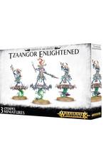 Games Workshop Warhammer Age of Sigmar Tzeentch Arcanites Tzaangor