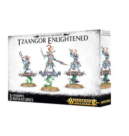 Games Workshop Warhammer Age of Sigmar Tzeentch Arcanites Tzaangor Enlightened