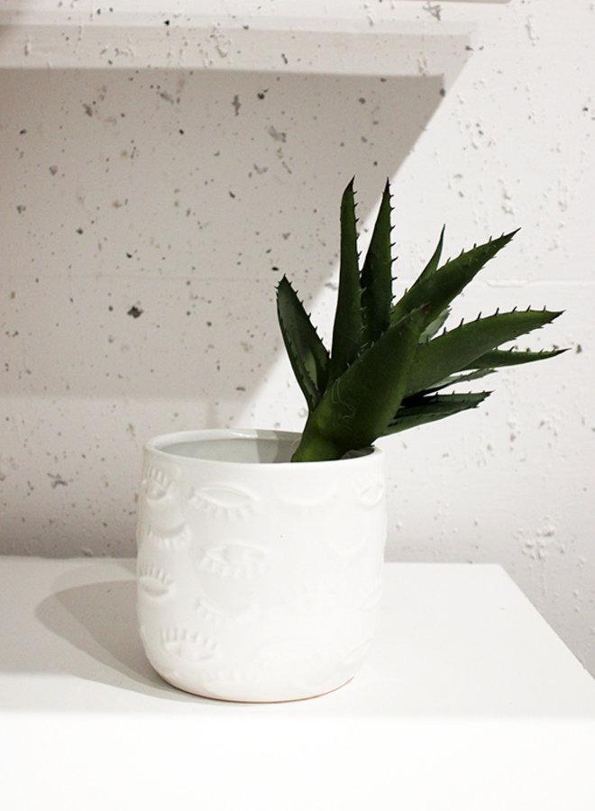 Aloe Pick