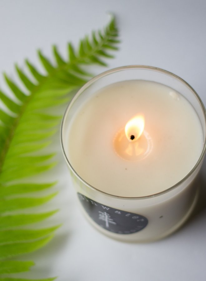 Soy Candle - Cucumber Mint