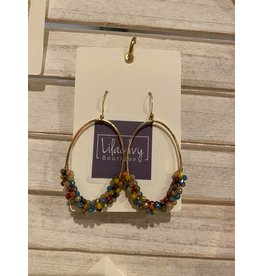 What's Hot Multi colored crystal oval earrings