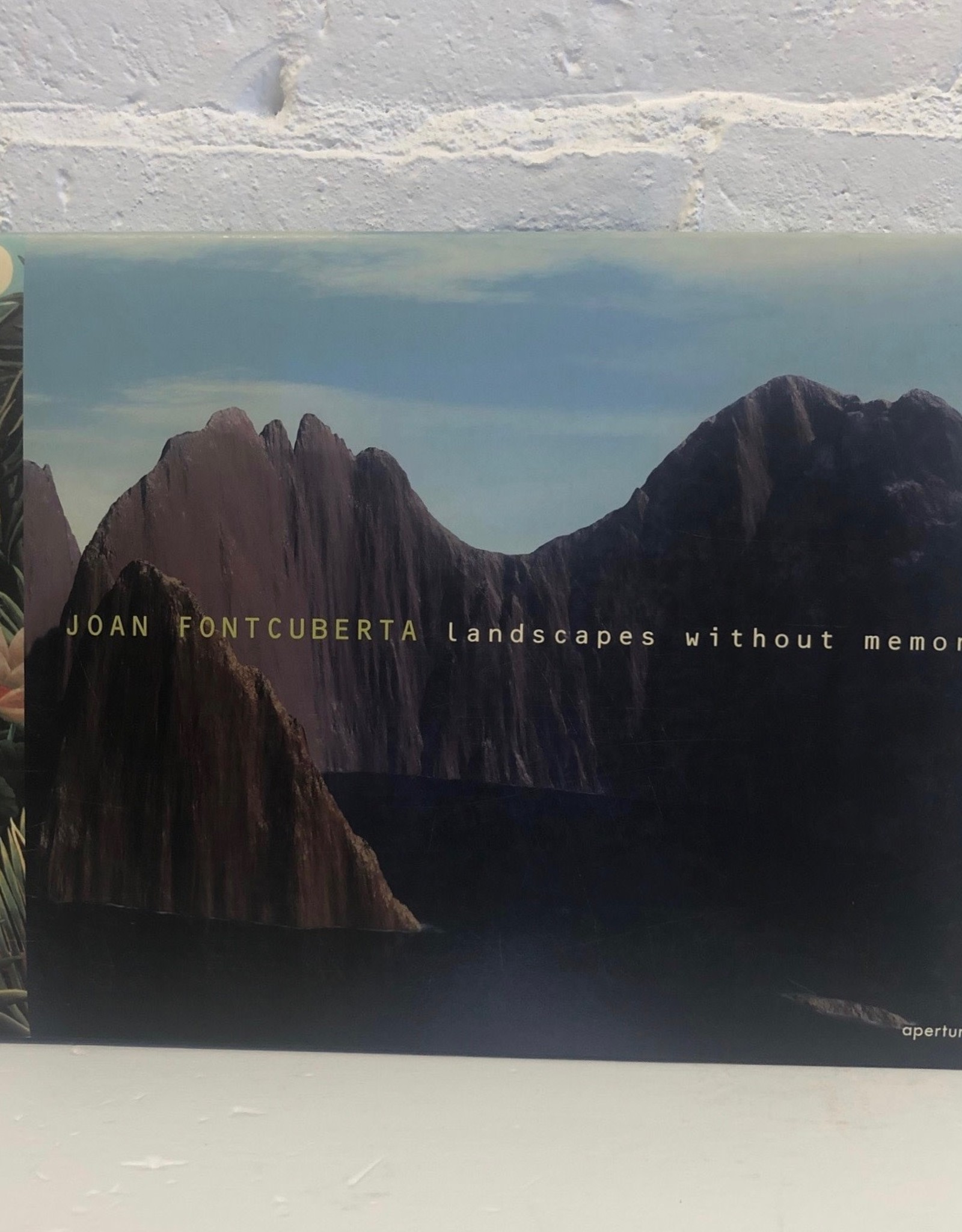 Landscape without Memory by Joan Fontcuberta