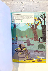 My Nature Sticker Activity Book: Streams and Ponds by Olivia Cosneau