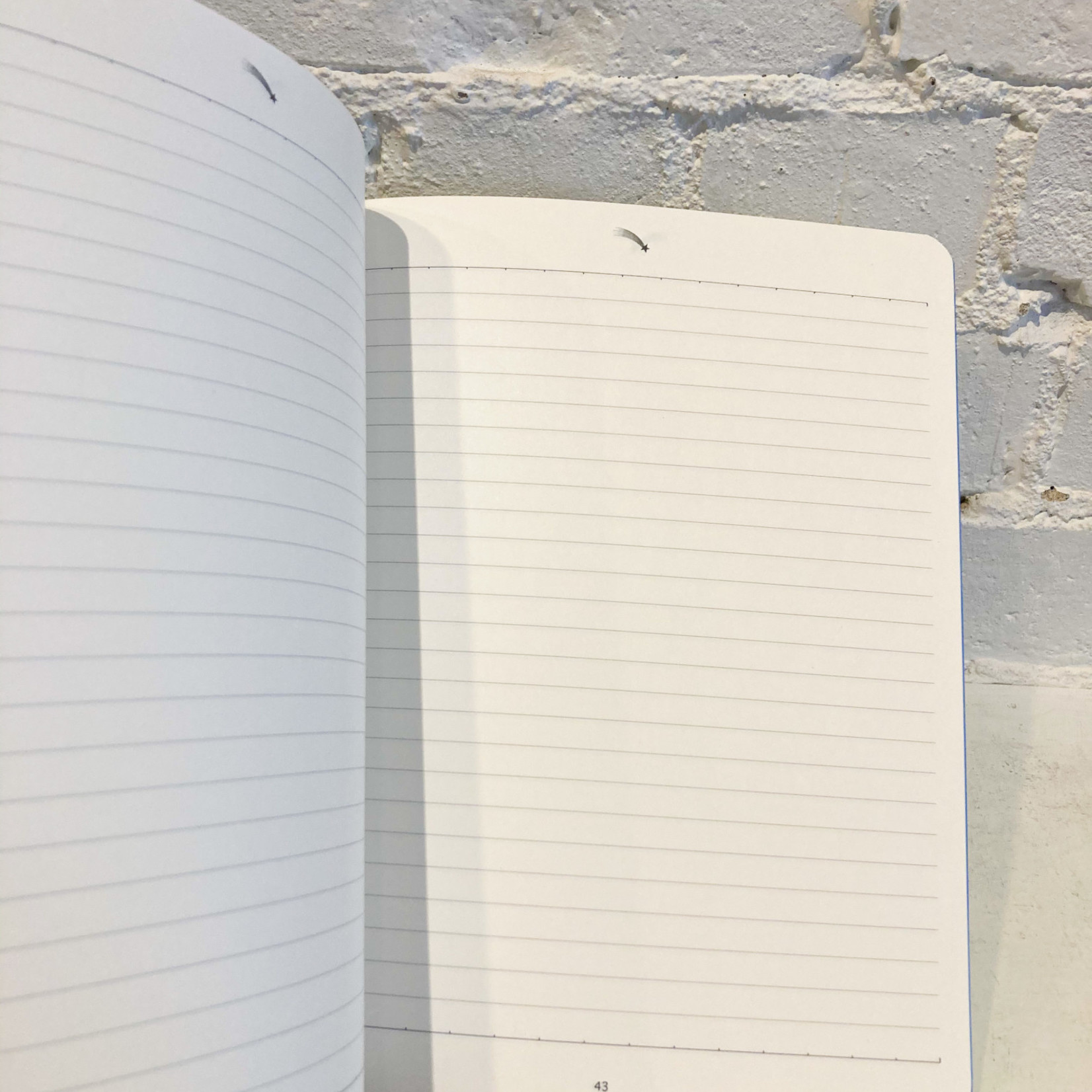 Alibabette Traité des Couleurs Composition Book