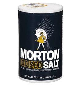 Safe Can - Morton Salt - #8647