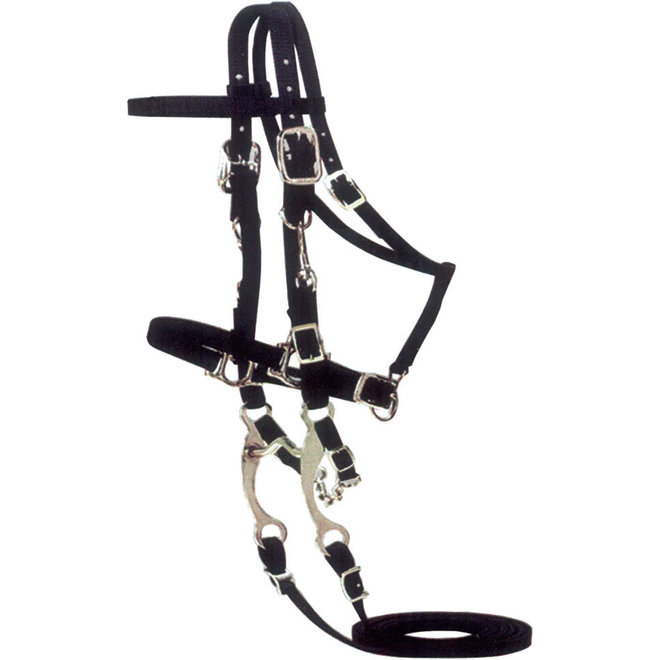Halter/Bridle Combination