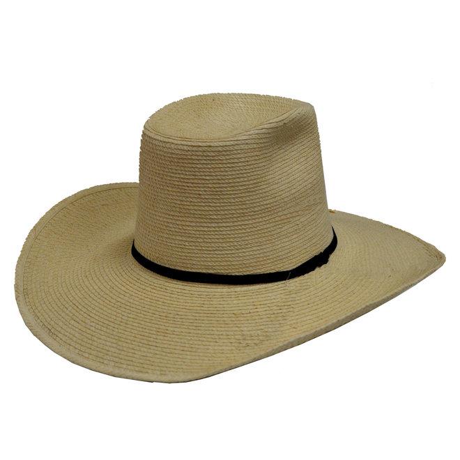 """Boxtop Palm 4"""" Hat"""