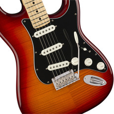 Fender Fender Player Stratocaster +top MN Aged Cherry Burst