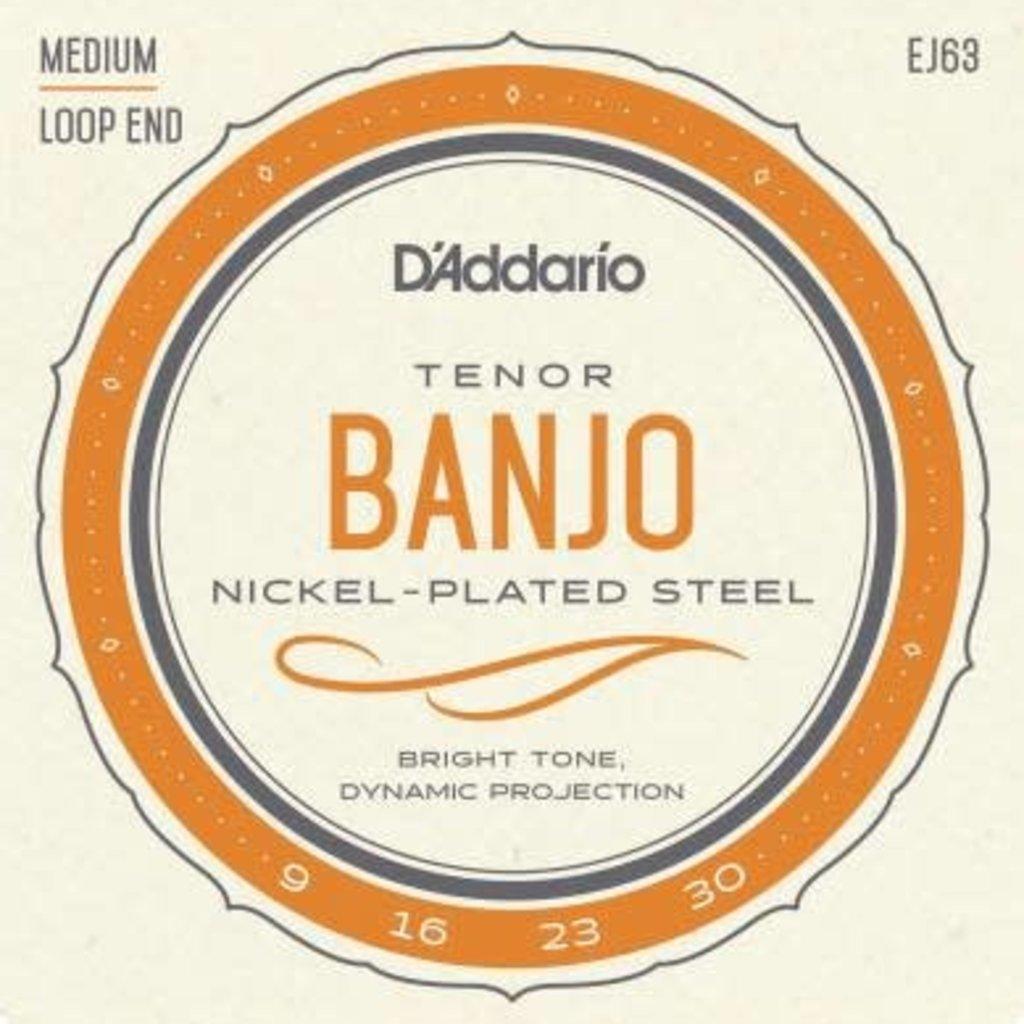 D'addario D'Addario EJ63 Tenor Banjo Strings Medium Loop End
