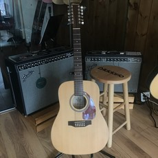 Consignment Norman B20-12 Sring w/gig bag