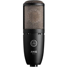 AKG AKG P220 Large Diaphram Condenser Microphone