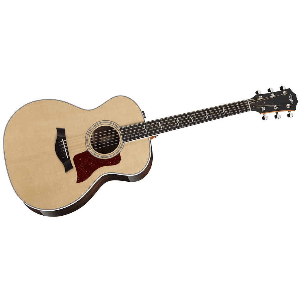 Taylor Guitars Taylor 414e-R