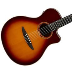 Yamaha Yamaha NTX3 BS Nylon Acoustic Guitar w/Electronics