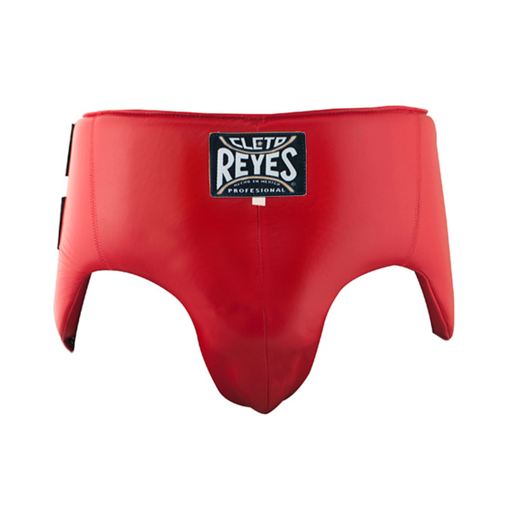 Cleto Reyes Groin and Kidney No Foul Protection