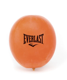 Everlast Everlast Double End Bag Bladder
