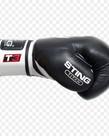 Sting Sting Titan Boxing Glove