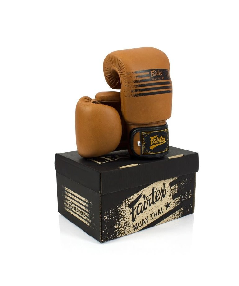 Fairtex Fairtex BGV21 Legacy Gloves