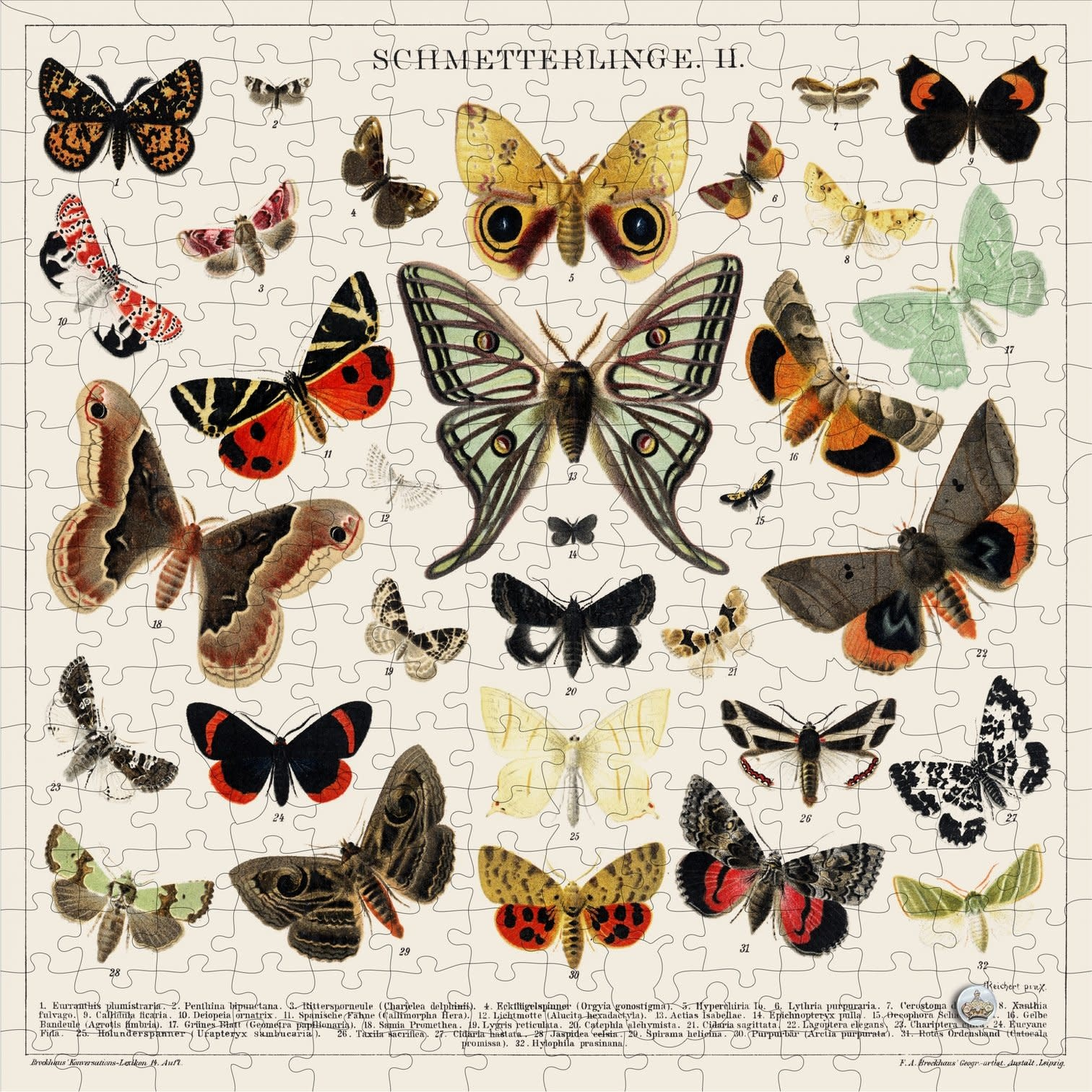 Trove Apothecary Puzzle Butterflies & Moths-1