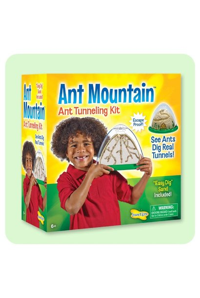 Ant Mountain Insect Lore