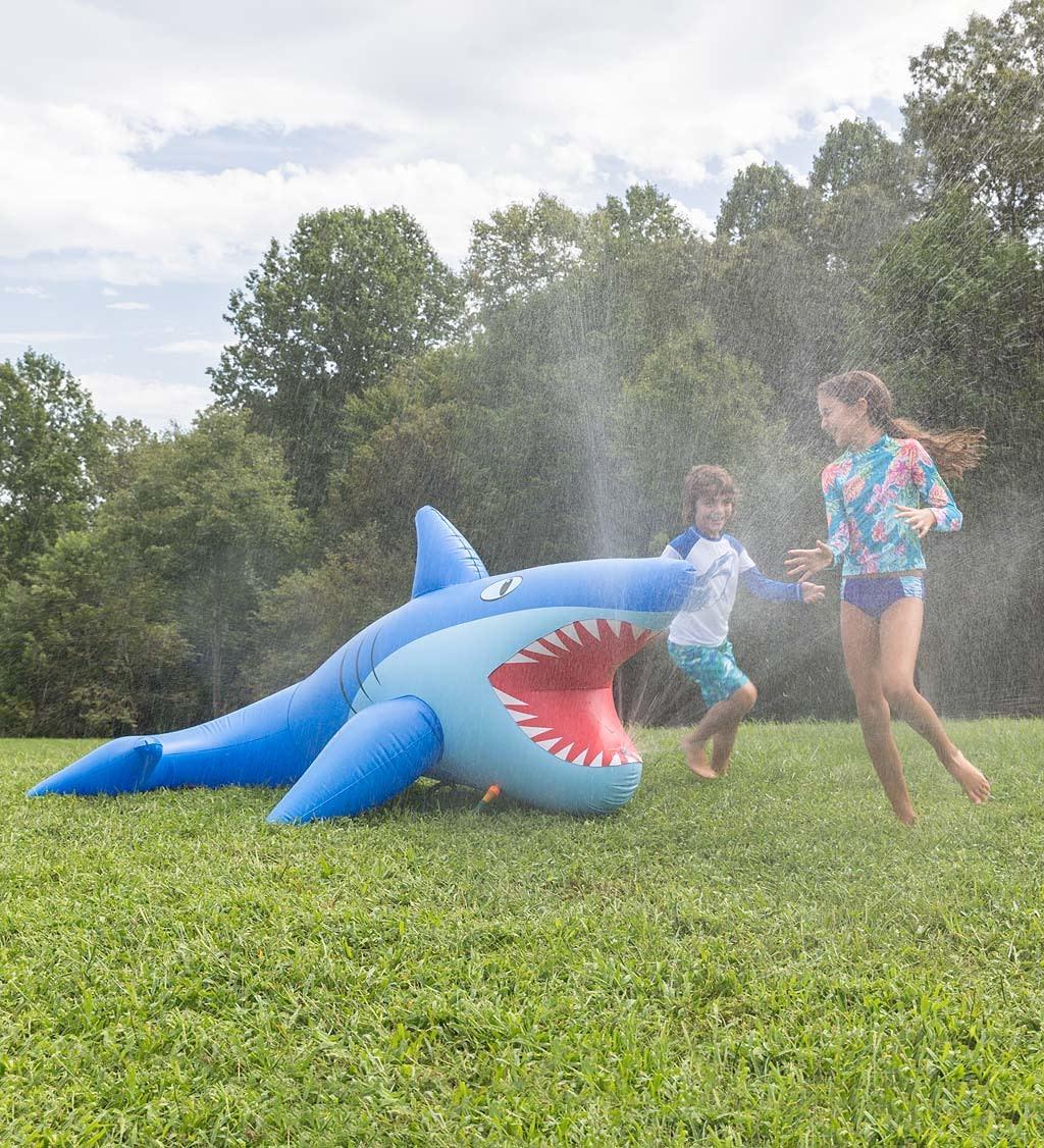 Mister Shark Outdoor Fun-1