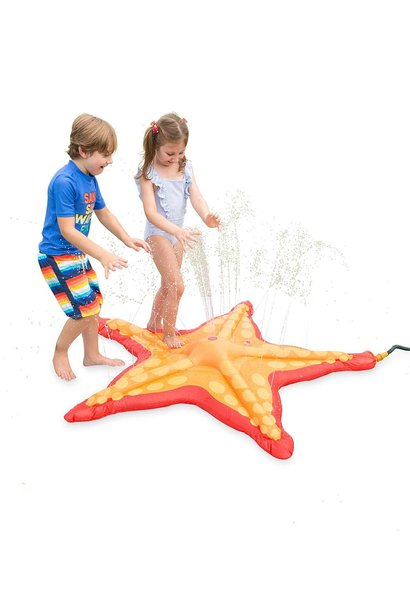 Starfish Sprinkler Splash Pad