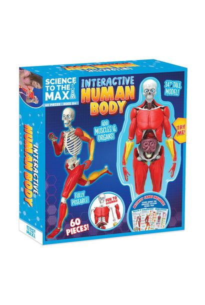 Interactive Human Body